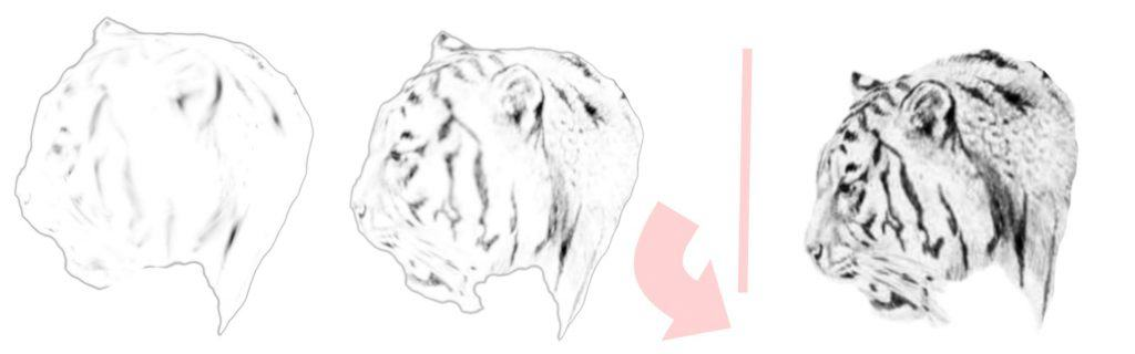 tiger drawing faces
