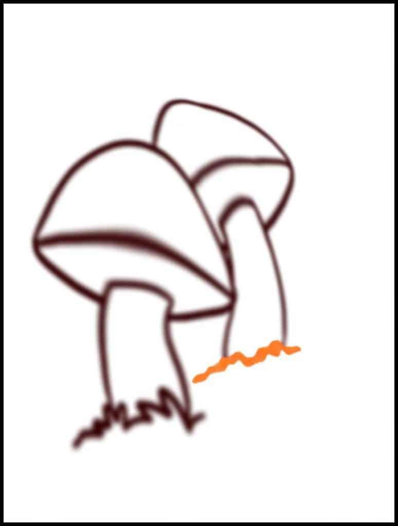 simple mushroom drawing