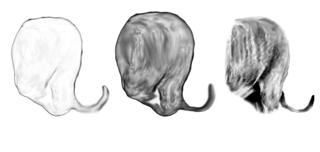 Lion Drawing tail